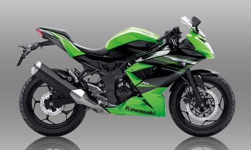 Spesifikasi dan Harga Kawasaki Ninja RR Mono