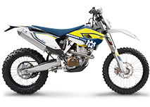 FE 300