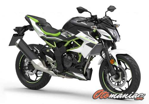 Performa Kawasaki Z150